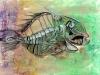 krawczak_ryba_WEB
